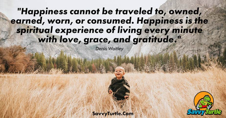 Happiness cannot be traveled to owned earned worn or consumed