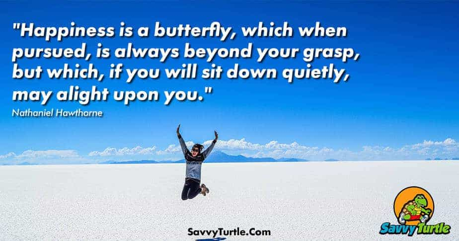 Happiness is a butterfly which when pursued