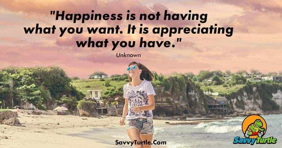 Happiness is not having what you want