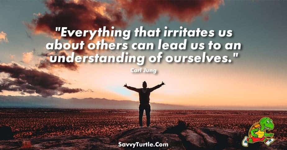 Everything that irritates us about others can lead