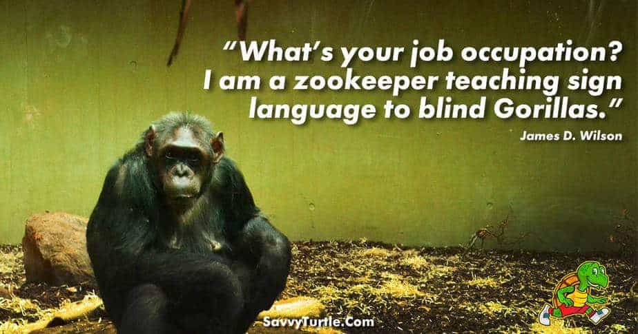 Whats your job occupation I am a zookeeper