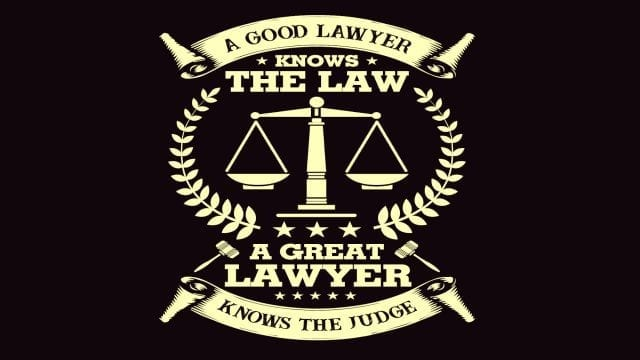 Savvy Turtle A Good Lawyer Knows The Law