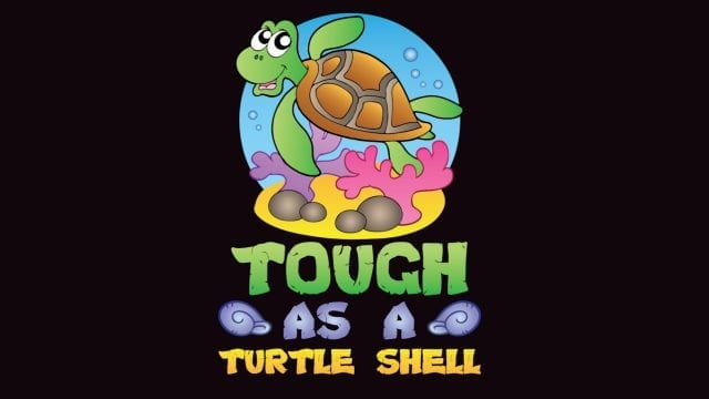 Savvy Turtle Tough As A Turtle Shell