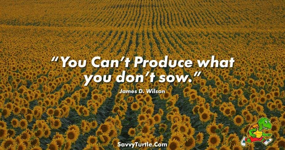 You Can't Produce what you don't sow