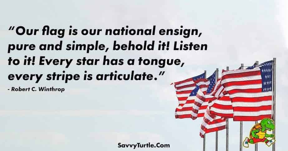 Our flag is our national ensign pure and simple