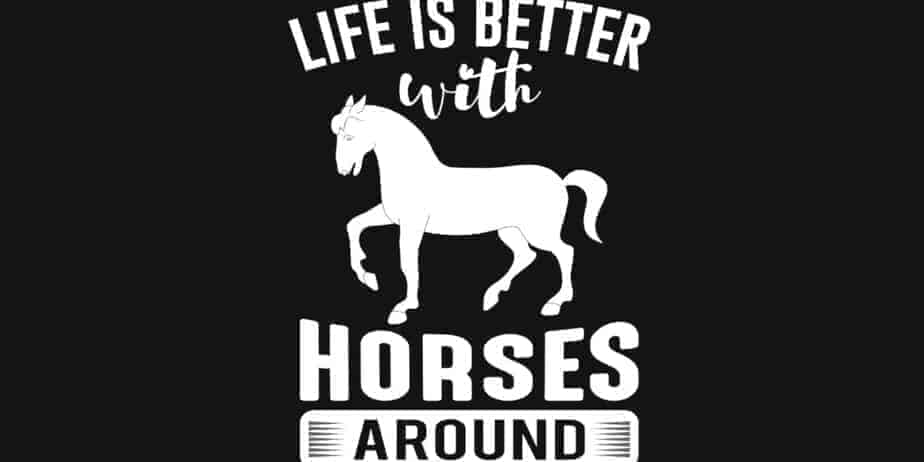 Life Is Better With Horses Around