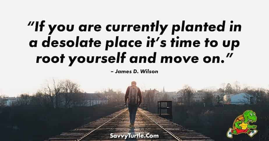 If you are currently planted in a desolate place