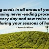 Sowing seeds in all areas of your life is an ongoing