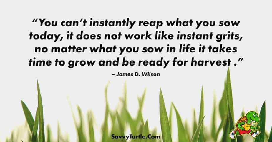 You cant instantly reap what you sow today