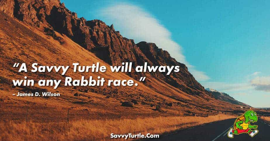 A Savvy Turtle will always win any Rabbit race