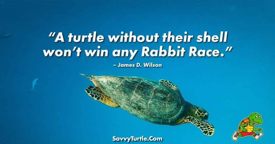 A turtle without their shell wont win any Rabbit Race
