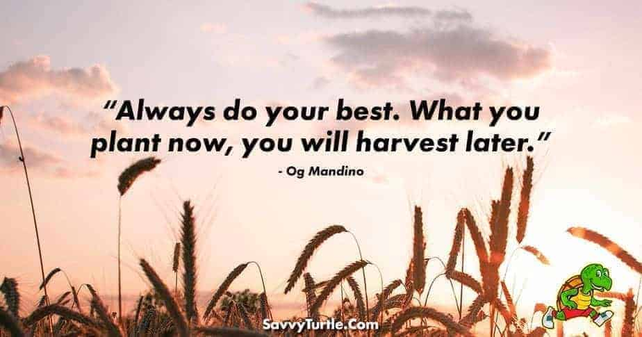 Always do your best What you plant now you will