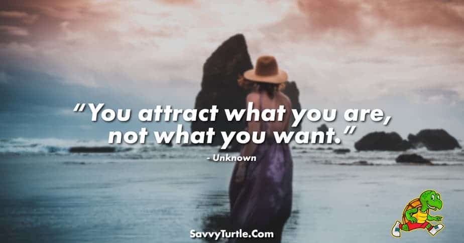 You attract what you are not what you want
