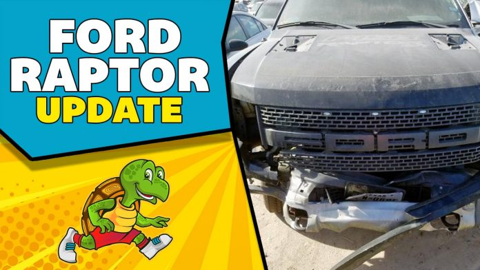 Savvy Turtle 2014 F150 Raptor Update