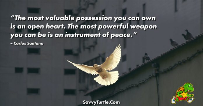 The most valuable possession you can own is an open heart